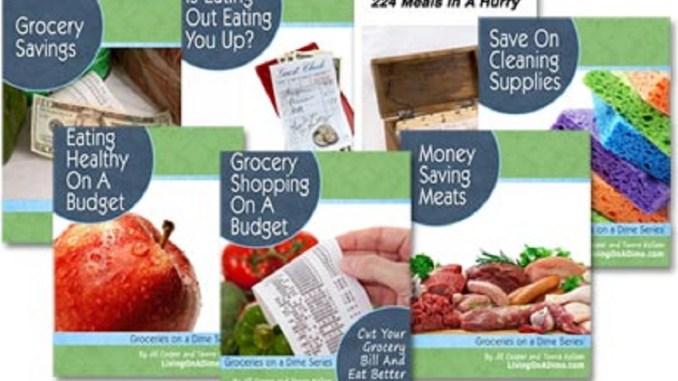 Groceries On A Dime e-books   RecipesNow!