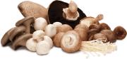 Asparagus and Mushroom Brunch Dish
