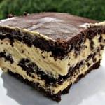 Chocolate Peanut Éclair squares