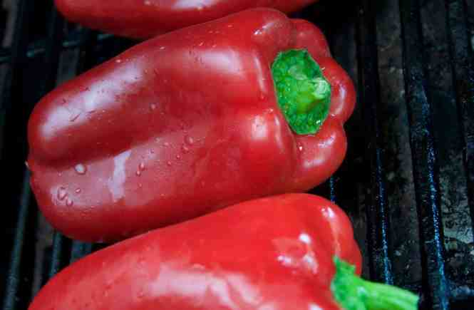 Chargrilled bell peppers - capsicums