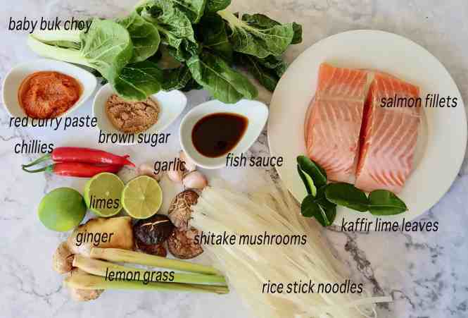 thai salmon and coconut noodle soup ingredients ready to prepare