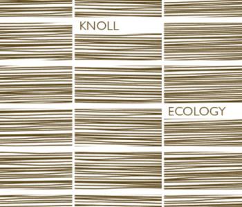 Ecology Nm 6/1 100% Lã natural sustentável