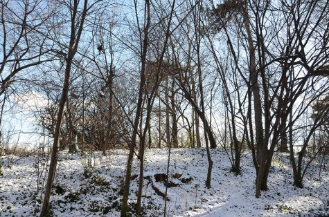 Prospect Park sous la neige à Brooklyn
