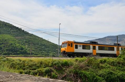 Passage d'un train dans la Vallée du Douro, Portugal
