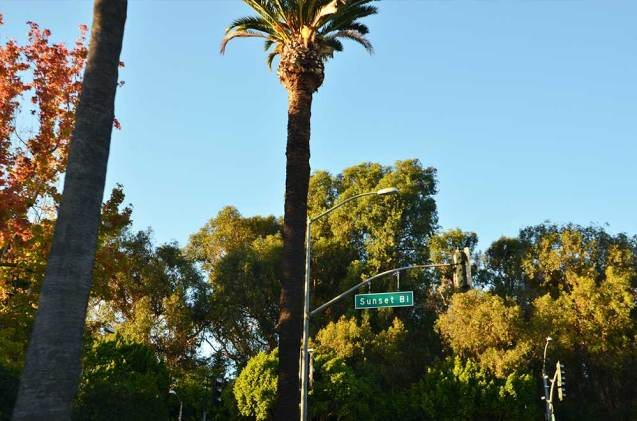 Sunset Boulevard, Bervely Hills, Los angeles