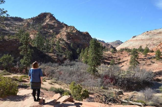 Paysage du Zion National Park, USA