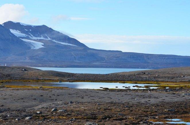 Paysage de la Baie du Roi, Svalbard