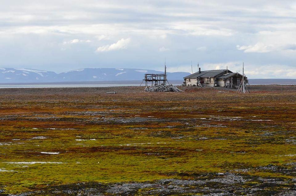 Cabane de trappeur dans un paysage vert de la Toundra au Svalbard