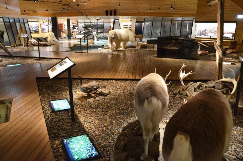 Intérieur du musée du Svalbard de Longyearbyen.