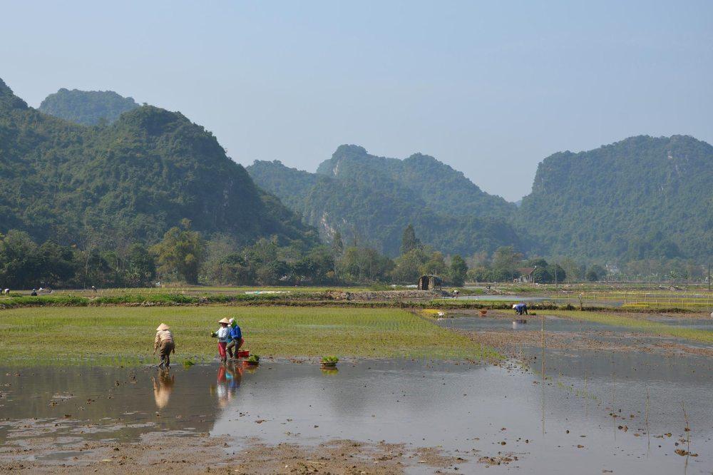 Le Vietnam en 3 semaines