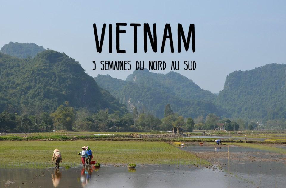 Rizières au Vietnam