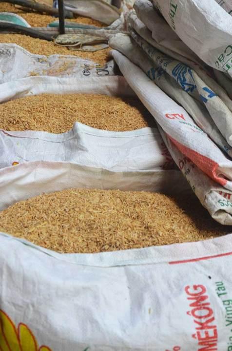 Galettes de riz, Can Tho, Delta du Mékong, Vietnam