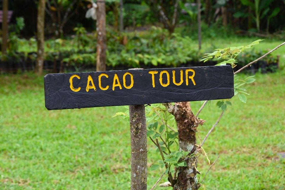 Panneau Cacao Tour de la Finca La Amistad, Costa Rica