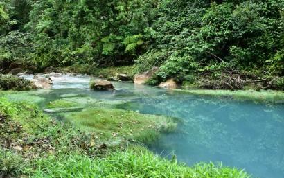 Vue sur l'eau turquoise du Rio Celeste au Costa Rica