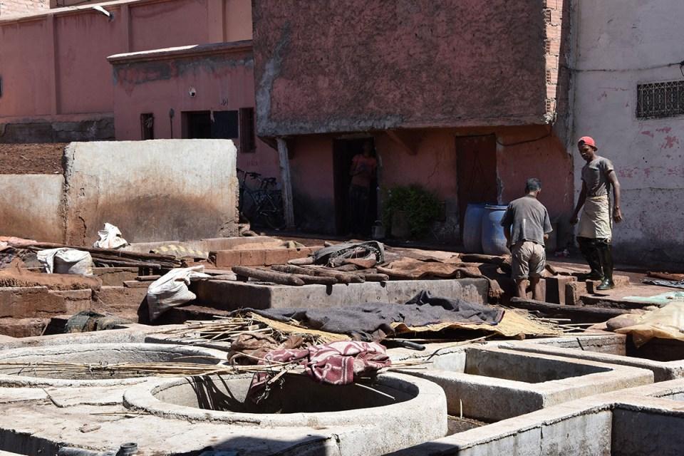 Intérieur des Tanneries, Marrakech, Maroc