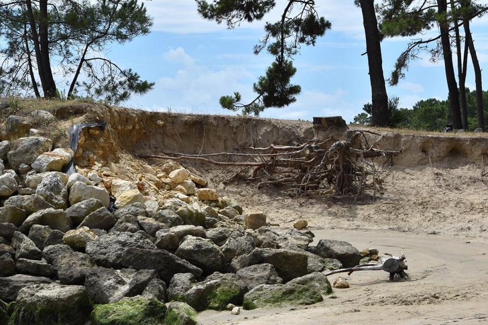 Erosion sur la plage de Gatseau, Ile d'Oléron