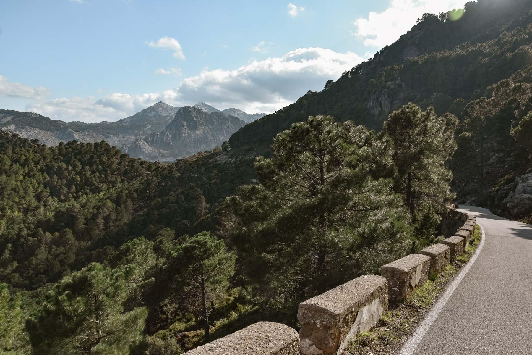 Vue sur les montagnes de la Sierra de Grazalema, Andalousie