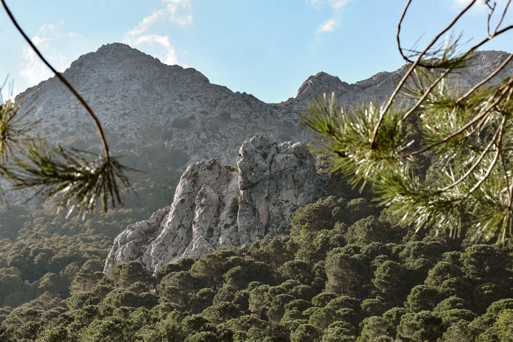 Randonnée dans la Sierra de Grazalema, Andalousie