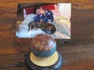 croquet ball photo holder
