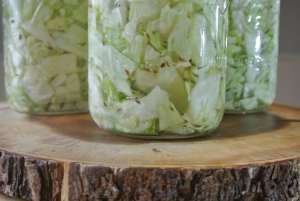 Kraut Close Up