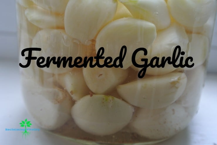 Fermented Garlic