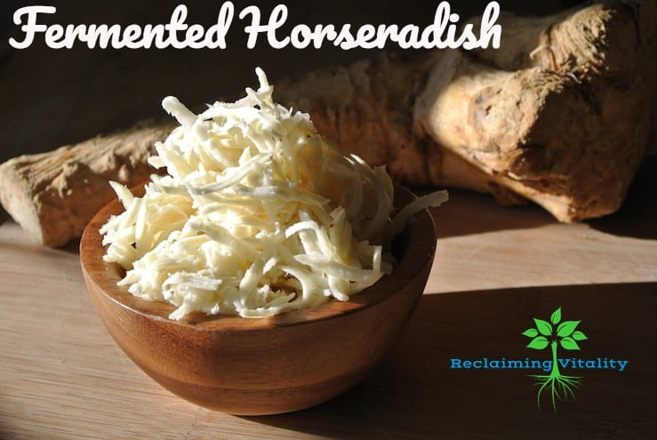 Fermented Horseradish