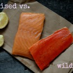 why wild caught salmon is best