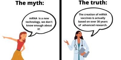 fact-checking image