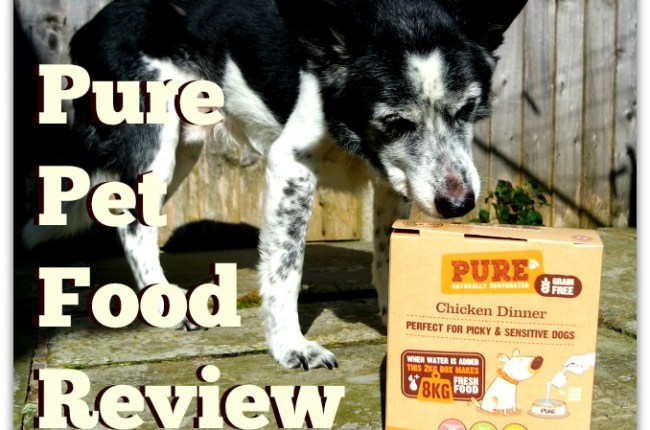 pure-pet-food-raw-diet