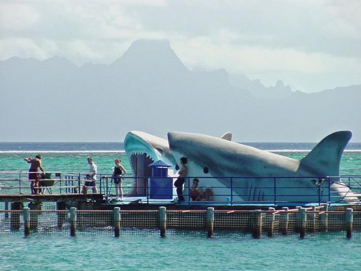 Tahiti Lagoonarium
