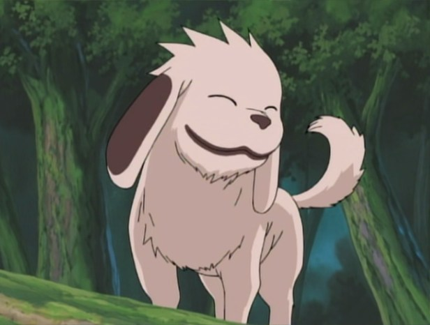 Akamaru from Naruto