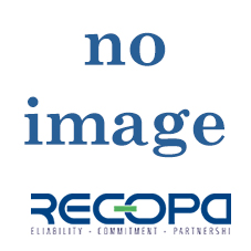 Recopa Ref: RCG20010100 --  STOP PIN KIT (4 ST / PC)