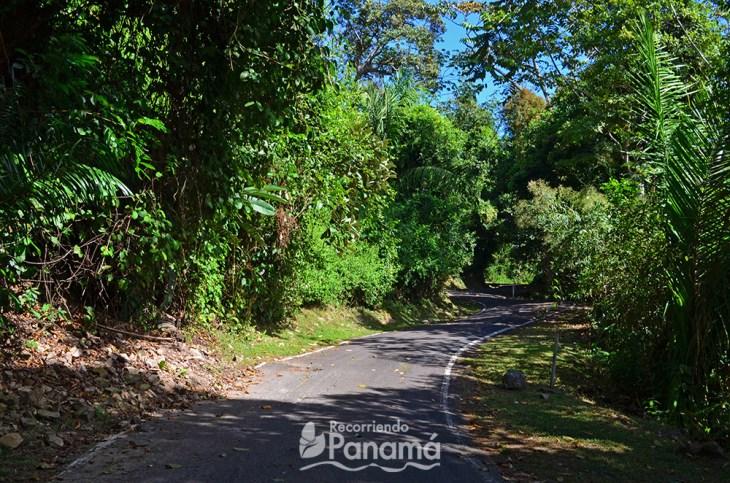 Hiking ancón hill