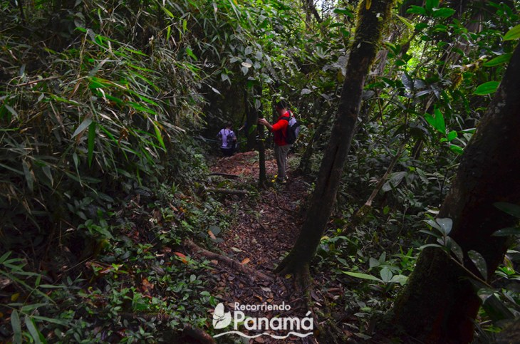 La Cruz Hill trail