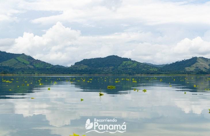 Lago Bayano.