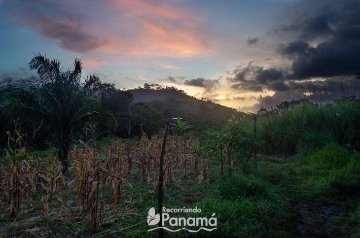 Sunset at Emberá Majé Cordillera