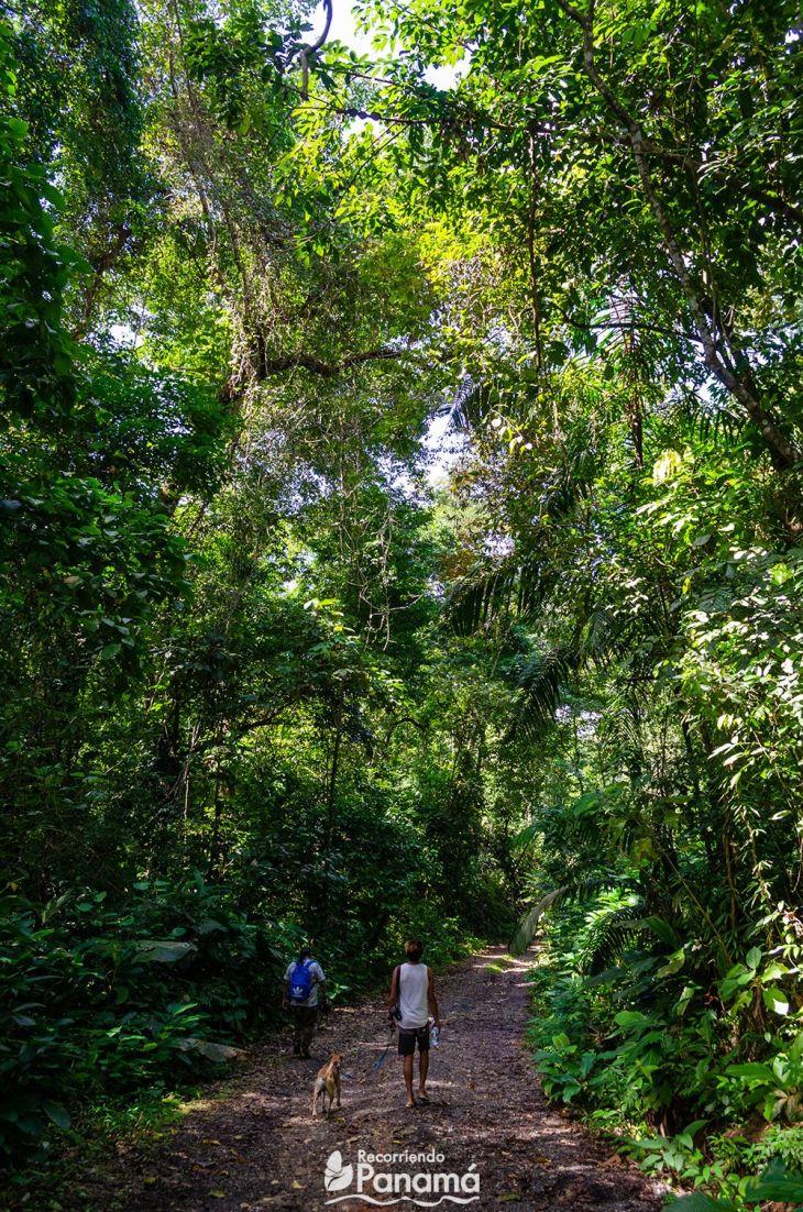 tortuguilla trail