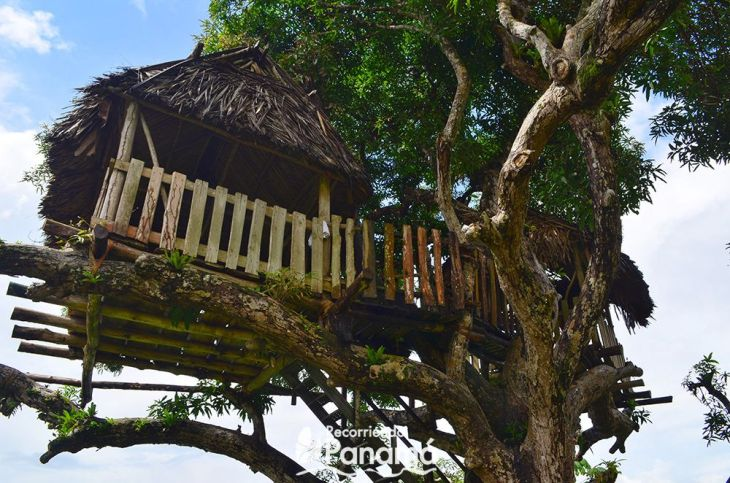 La casa del árbol.