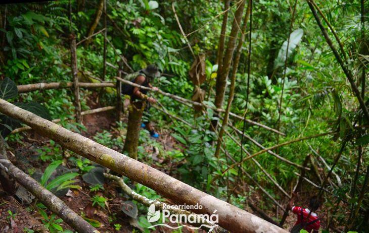 Parte de los pasamanos que se han colocado. Sendero de La Cueva del Cacao