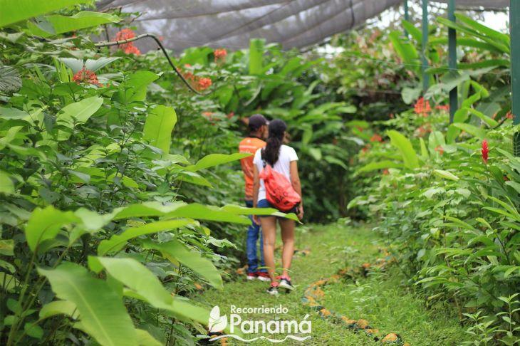 Agro Tourism la granja campo y aventura