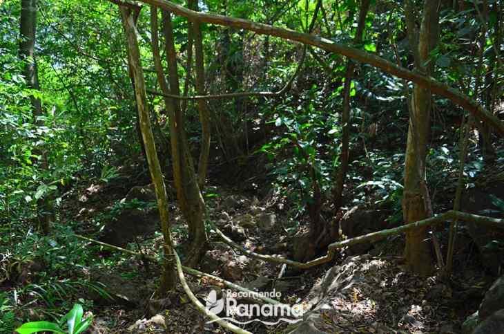 Cabra Hill trail
