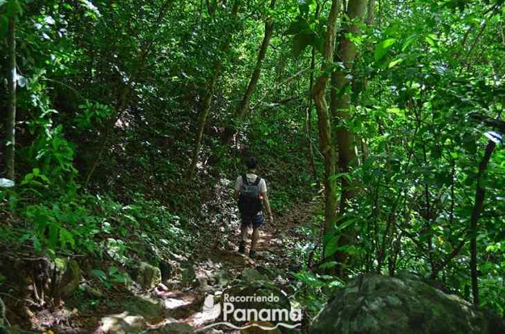 Saca Lágrimas Waterfall trail.