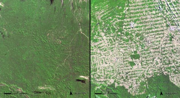 Deforestation_Brazil1