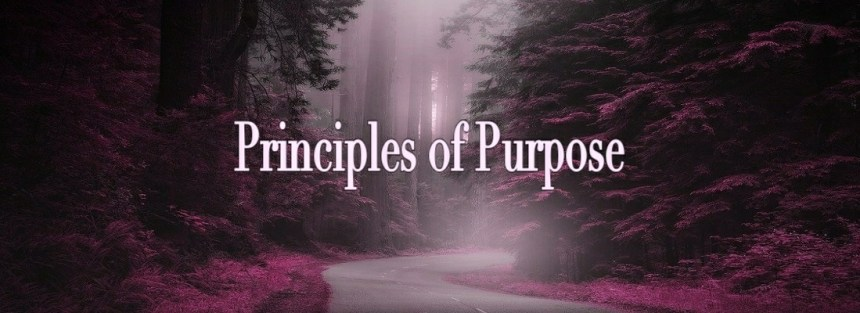 Principles of Purpose Use Good Judgement