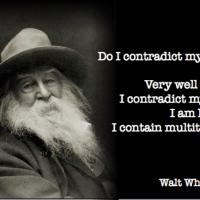 I contain multitudes - Walt Whitman