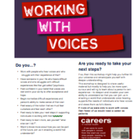 Hearing Voices Training - Workshop#2:  Working With Voices  Dec 2016