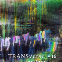 TRANSverse Issue 16 : Madness