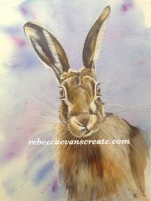 """'Alice' hare in watercolour 200 lb Saunders cold press 15""""X11"""""""