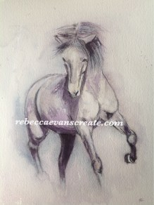 Charcoal and watercolour horse study