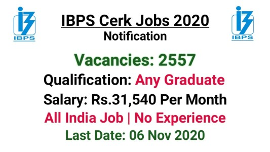 IBPS Clerk Notification 2020